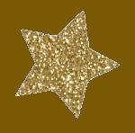 mirjanascheepens-ster-goud
